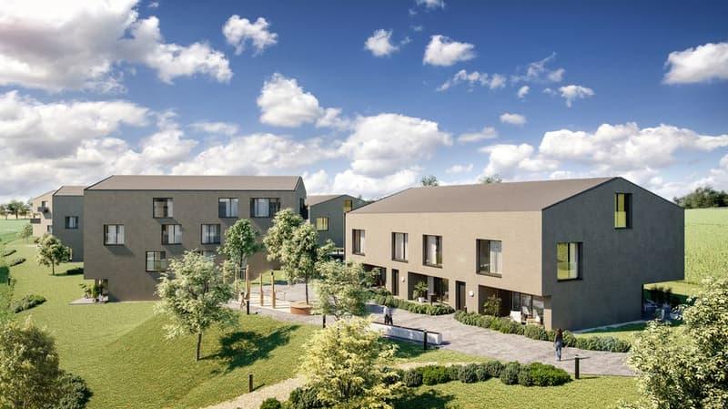 Villas jumelées à vendre à Châtel-St-Denis, avec finitions à choix (1)