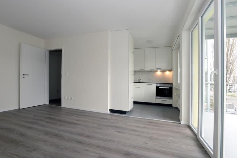 Exklusive, neu erstellte 2.5-Zimmer-Dach-Wohnungen