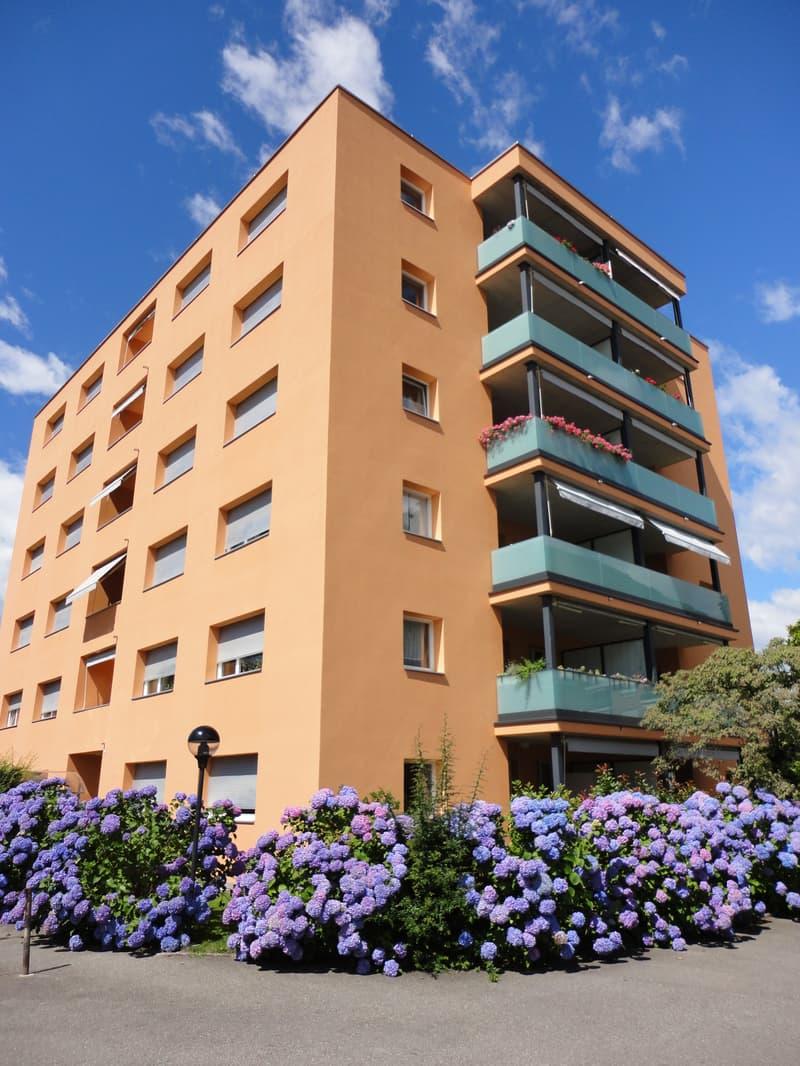 Schöne Wohnung inklusive gratis Parkplatz im sonnigen Ascona