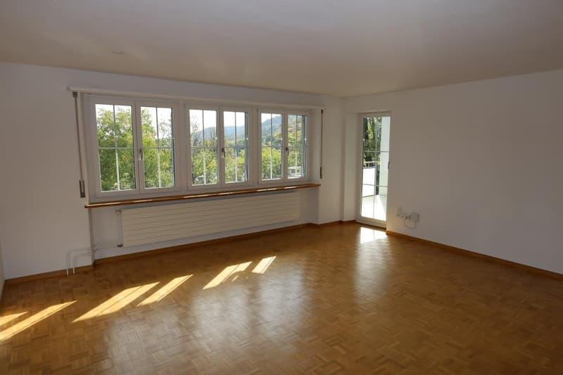 Wohnen im Grünen - City Stay Schaffhausen (2)