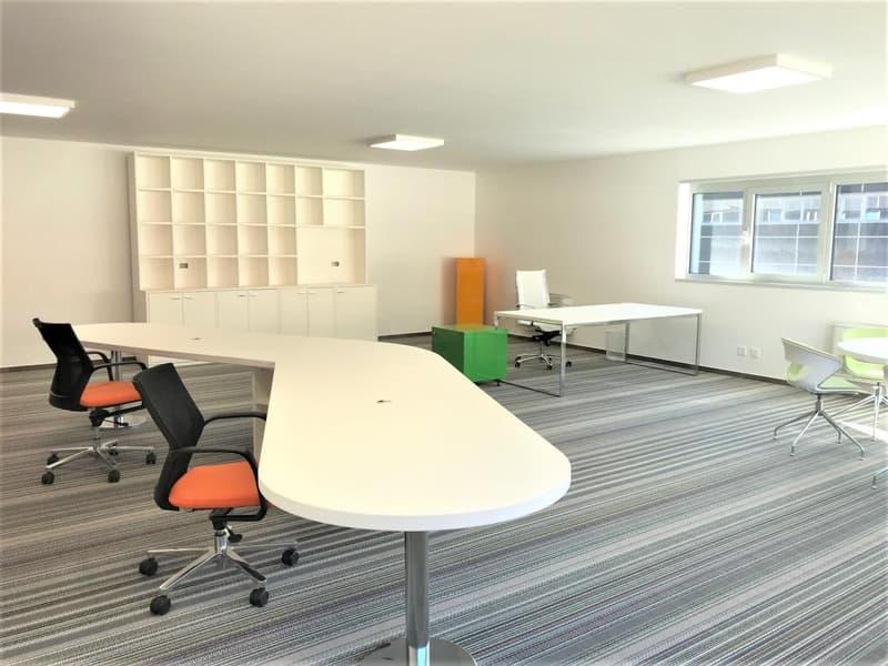 Ampio e luminoso ufficio