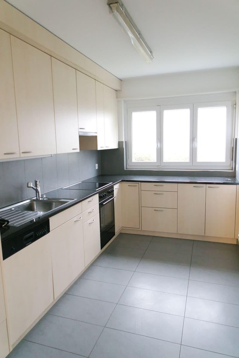 Schöne 4.5-Zimmer Wohnung mit neuer Küche und Bad (1)