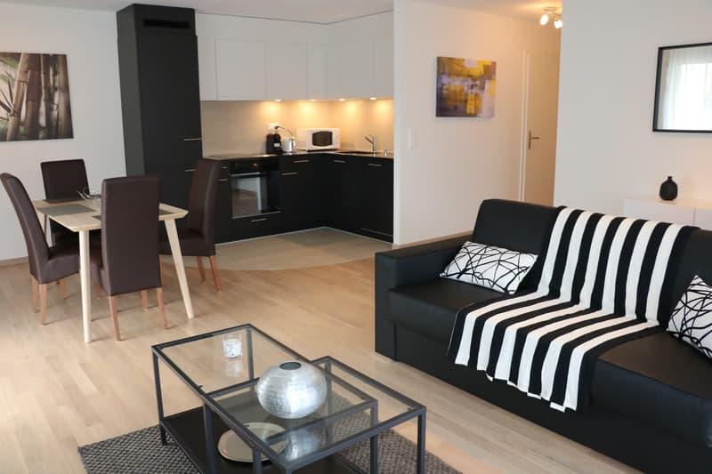 Appartements meublés 2.5p - Saint-Sulpice
