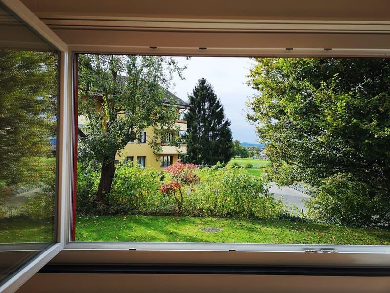 4.5 Zimmer Wohnung Hoch-Parterre