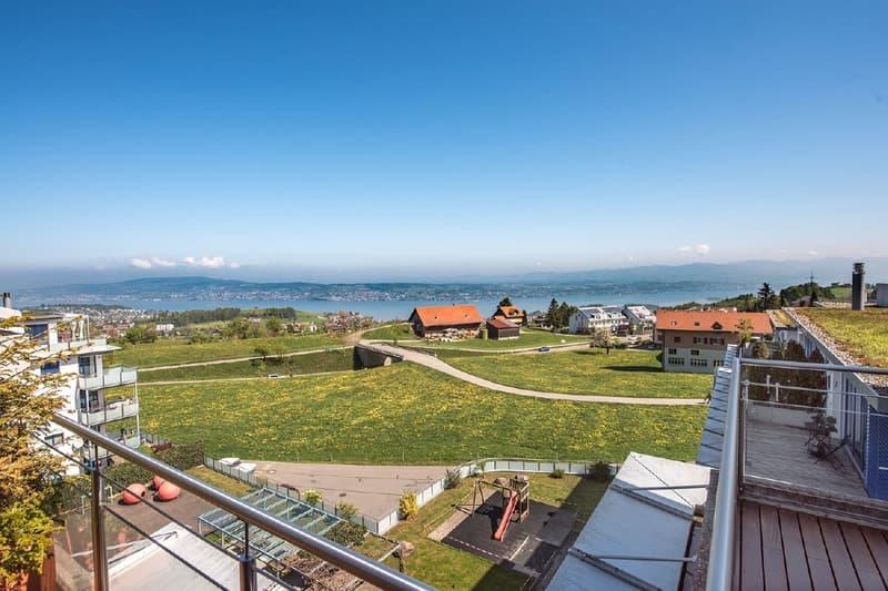Traumhafte Sicht über den Zürichsee