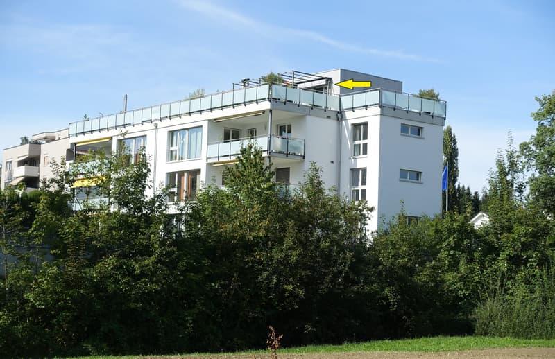 Moderne 6.5 Zimmer Attika-Maisonette-Wohnung (1)