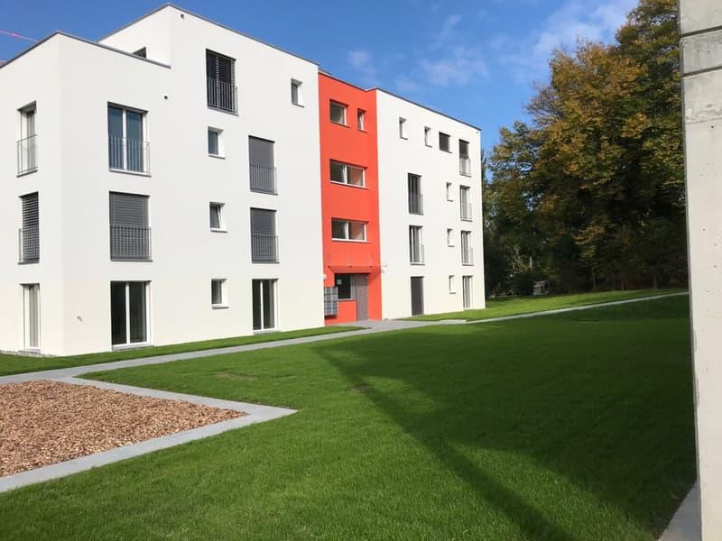 Erstvermietung / Top Wohnung (3)