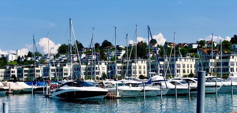 Exklusive Attika Wohnung im Hafen Staad, direkt am Wasser, mit 180 m2 Terrasse, unverbaubare Seesicht!