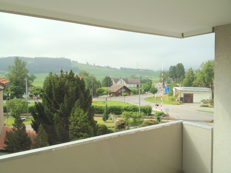 Wohnung mit Sicht auf Alpstein und Säntis