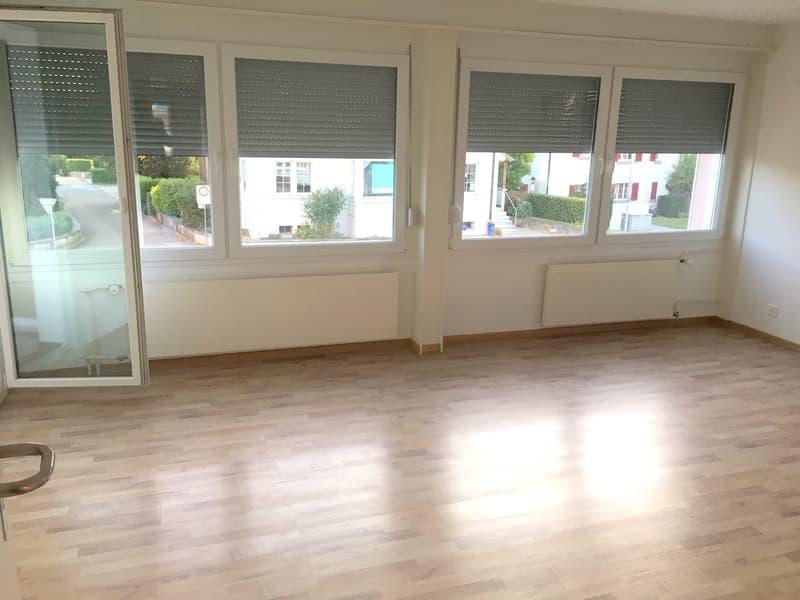 Schöne, teilrenovierte 4.5 Zimmer Wohnung an verkehrstechnisch guter Lage (ideal als Praxis/Büro)