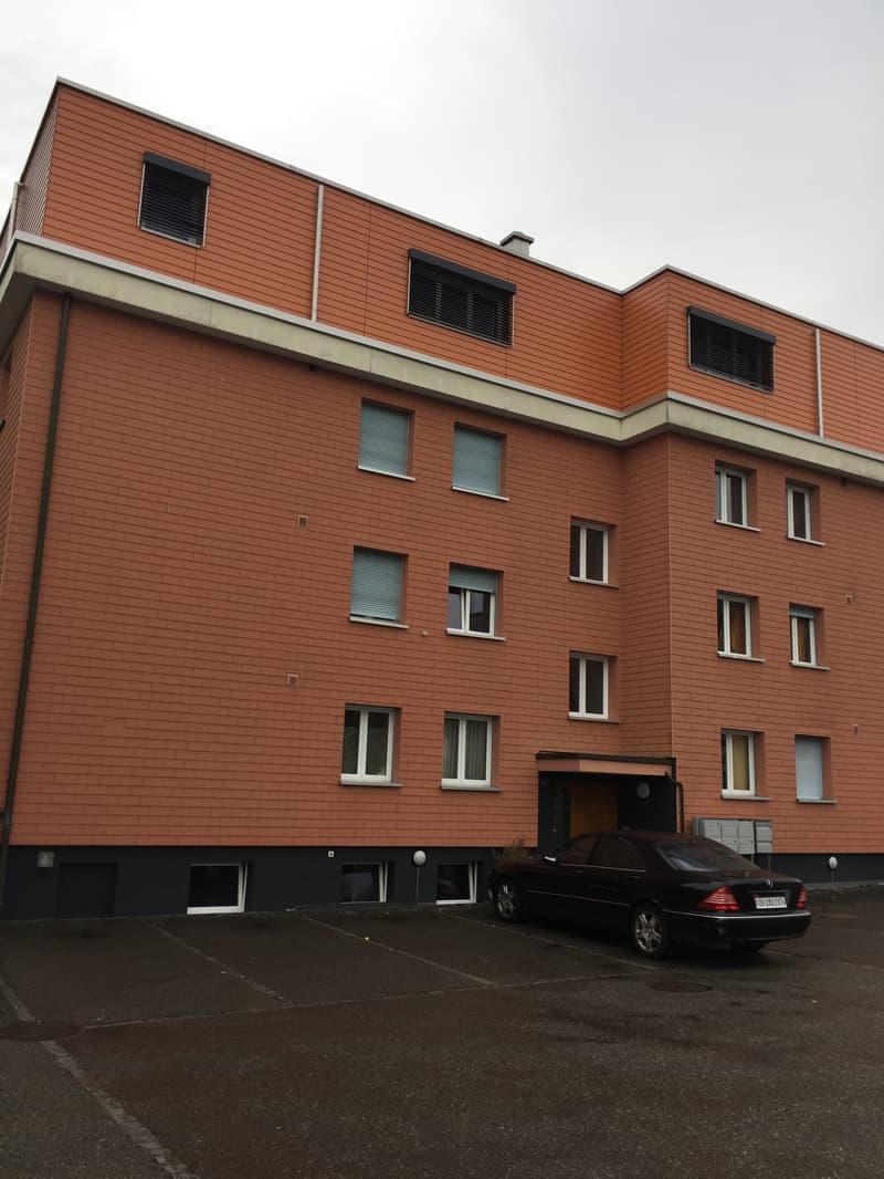 Helle frische 4 Zi-Wohnung in Safenwil