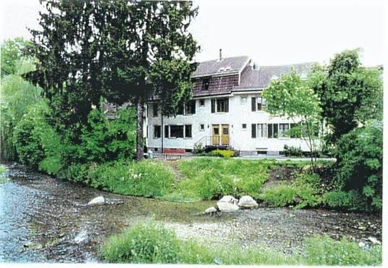 Grosszügige, gemütliche Dachmaisonette-Wohnung am Bach