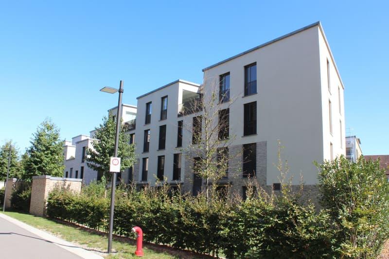 Duplex Wohnung im trendigen Äschbachquartier