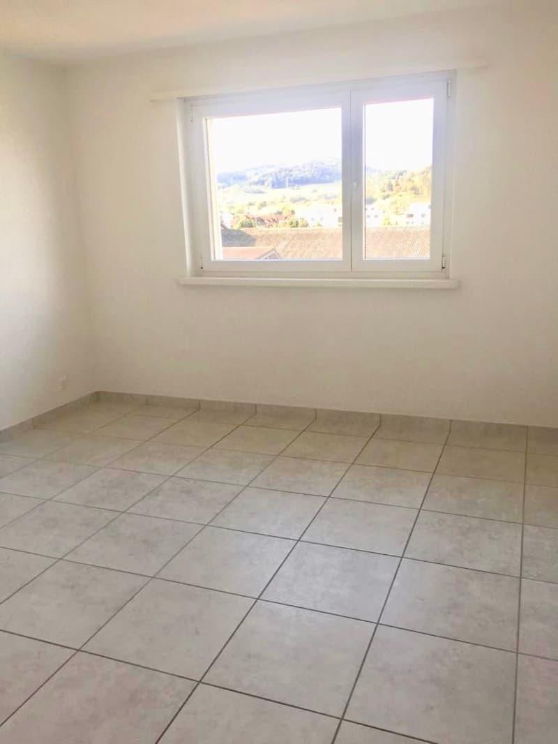 Neu Renovierte und moderne 3 Zimmerwohnung in Kleindöttingen (3)