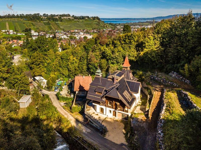 """Einzigartige Neubau-Villa des """"Dolder""""-Star-Architekten Jacques Gros"""
