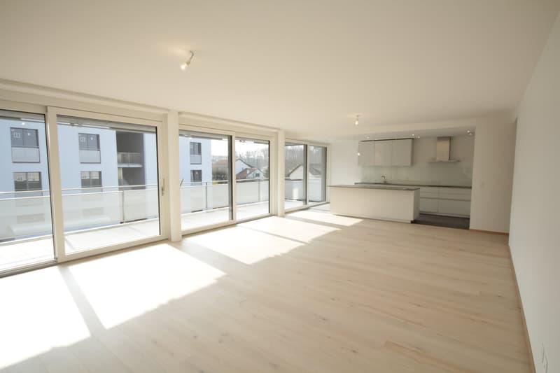 Superbe attique contemporain avec terrasse