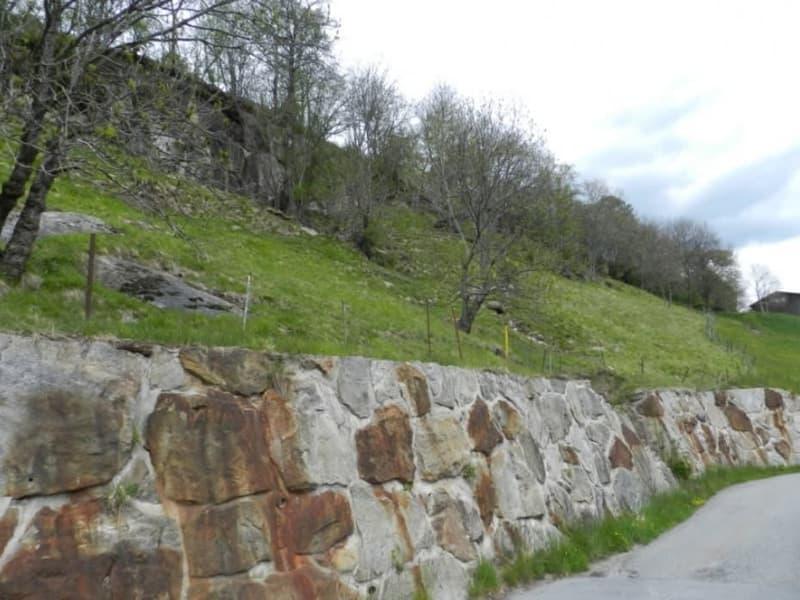 Preiswertes, grosses Bauland | Grundstück in Birgisch bei Naters