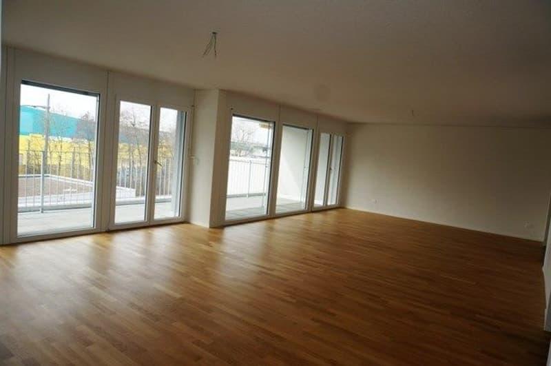 Helle und sonnige Attika-Wohnung mit grosser Terrasse  39m2 (2)