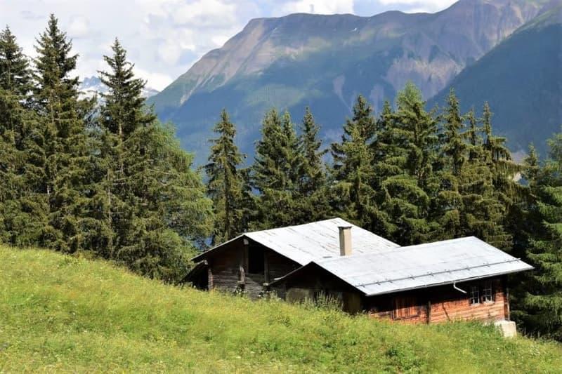 Maiensäss-Alphütte mit viel Umschwung unterhalb der Riederalp