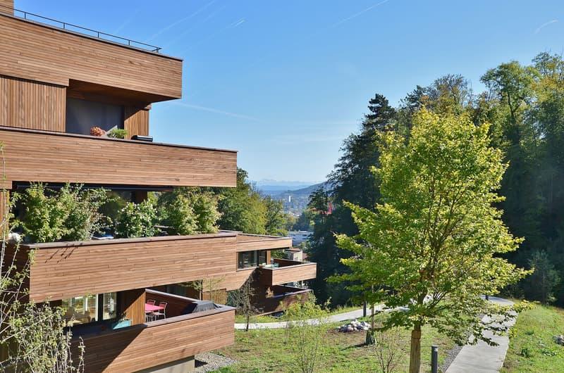 Exklusive Attika-Mietwohnung im Eigentumsstandard in der neuen Belvédère-Überbauung