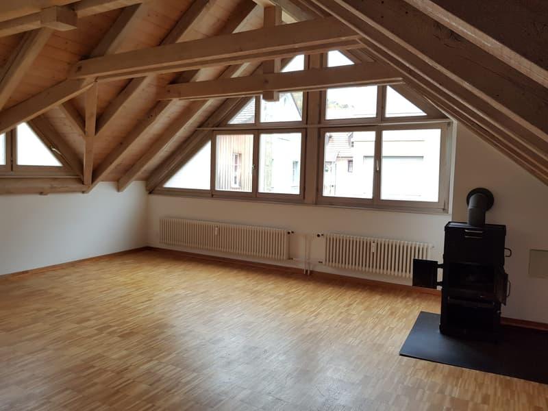 spezielle 3,5 ZImmer Wohnung an zentraler Lage in umgebautem Bauernhaus
