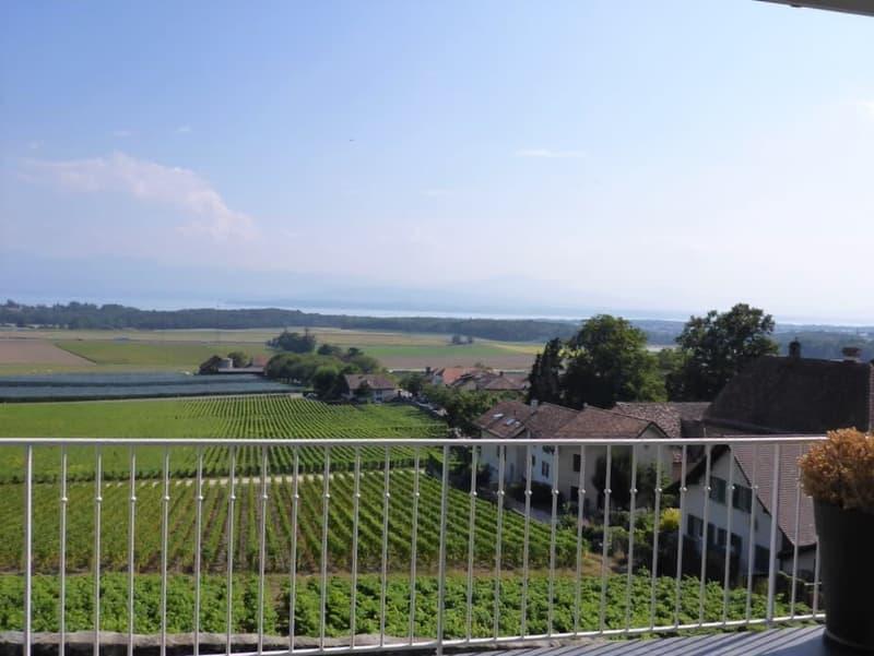 Beau duplex dans maison vigneronne, avec terrasse et petit jardin, vue sur le lac et les alpes