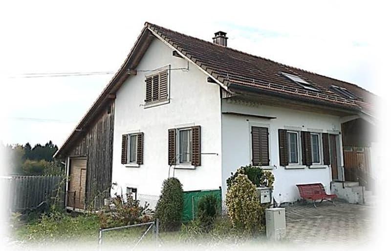 5-Zimmer-Einfamilienhaus (einseitig angebaut) mit Werkstatt, Schopf, diversen Keller-/Nebenräume