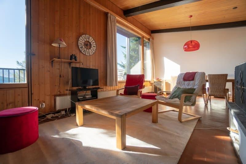 Home Story vous propose un joli chalet mitoyen de 4 pièces sur 2 niveaux avec petit jardin à 150m du téléski (1)
