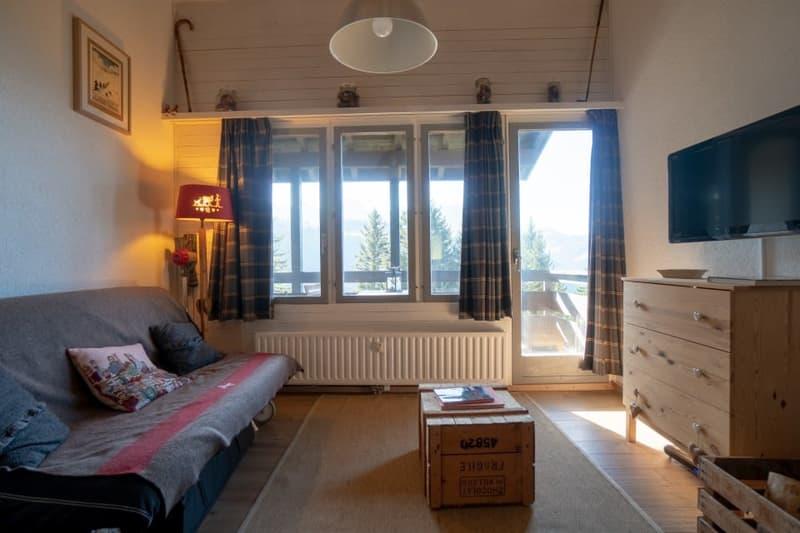 Home Story vous propose un magnifique 2 pièces en duplex à 150m de la liste de ski (1)