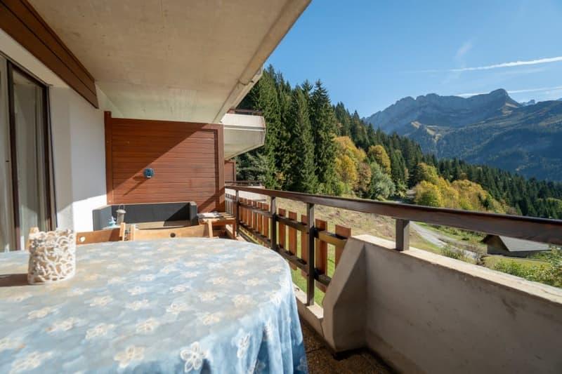 Gryon Immo vous propose un spacieux 4,5 pièces en duplex, proche de la nature, magnifique vue (4)