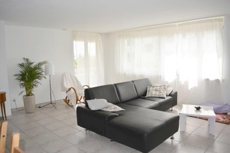Grosszügige Familien-Wohnung in ruhigem Wohnquartier