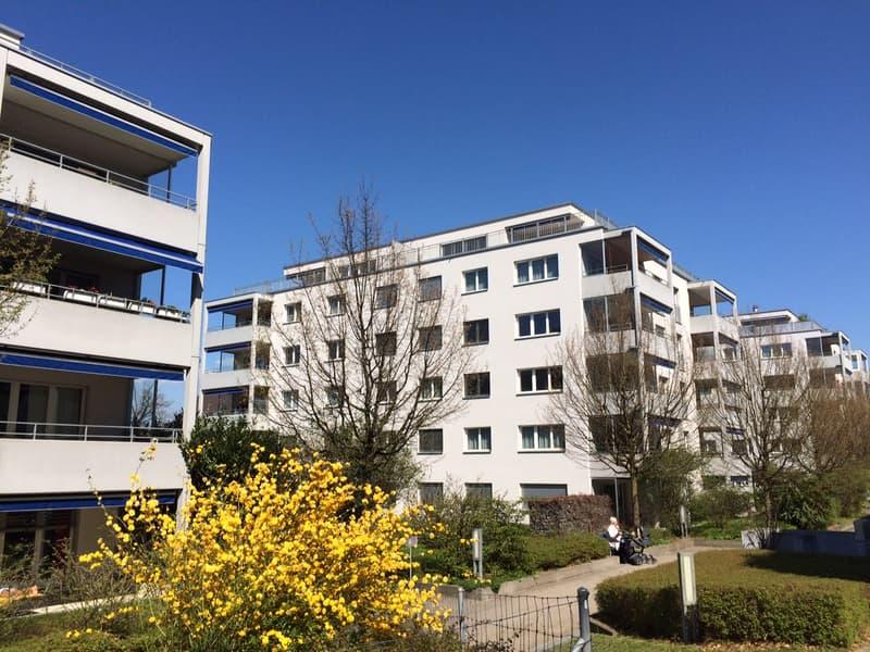 Modernes Wohnen in der Nähe des Zürichsees