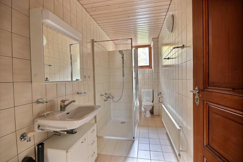 Magnifique appartement au Brassus, avec garage privé et jardin commun