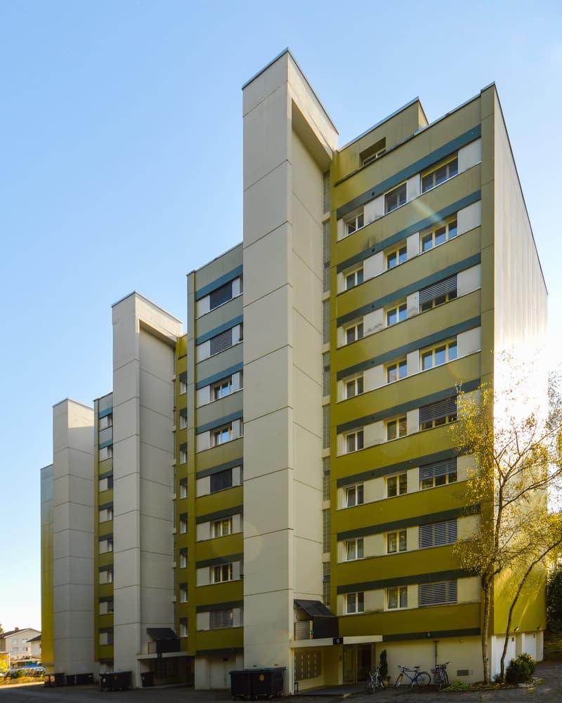 Sonnige Wohnung mit grossen Balkon und gemeinsamer Dachterrasse