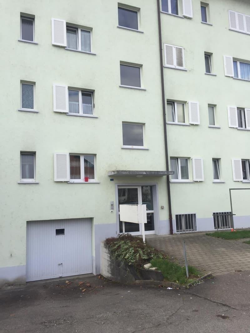 Neu Renovierte und moderne 3 Zimmerwohnung in Kleindöttingen (2)