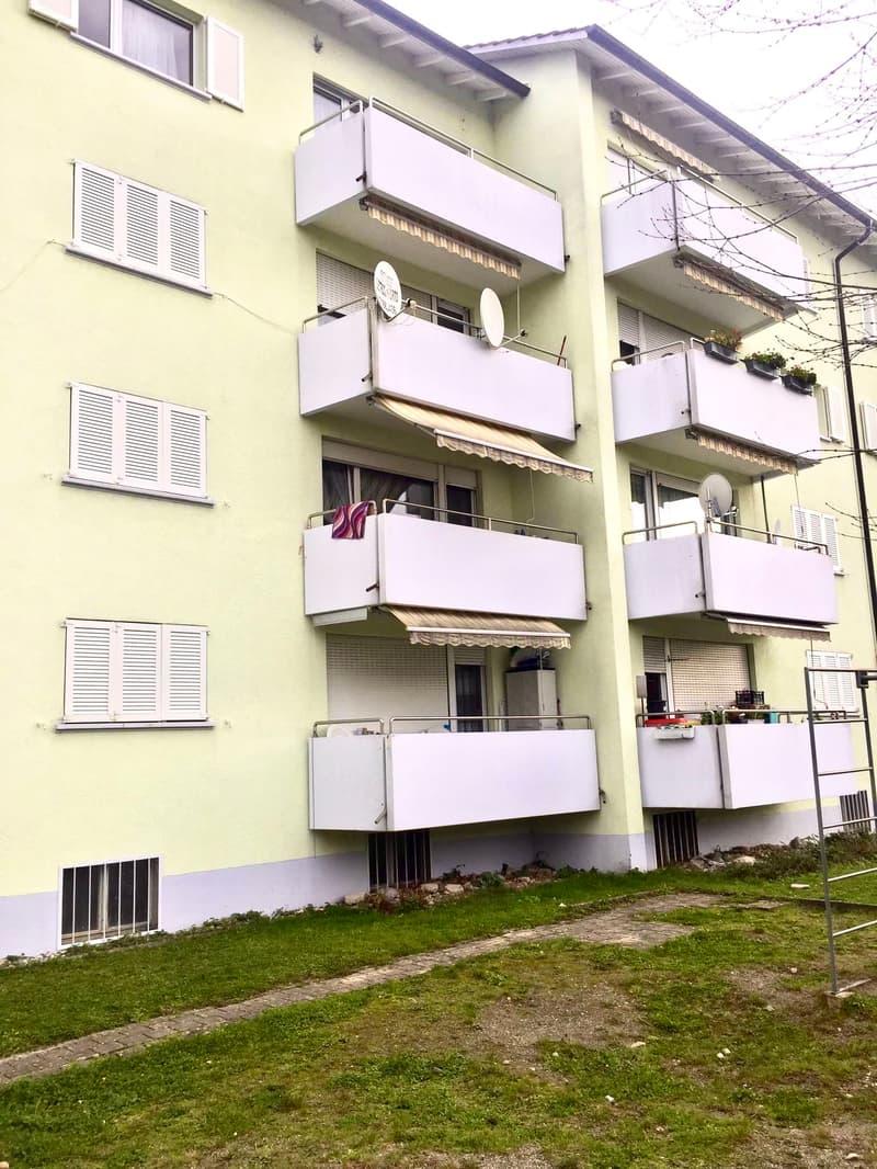 Neu Renovierte und moderne 3 Zimmerwohnung in Kleindöttingen (1)