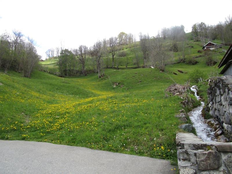 Wohnbauland an sonniger Lage, mit Blick auf die Urner Bergwelt