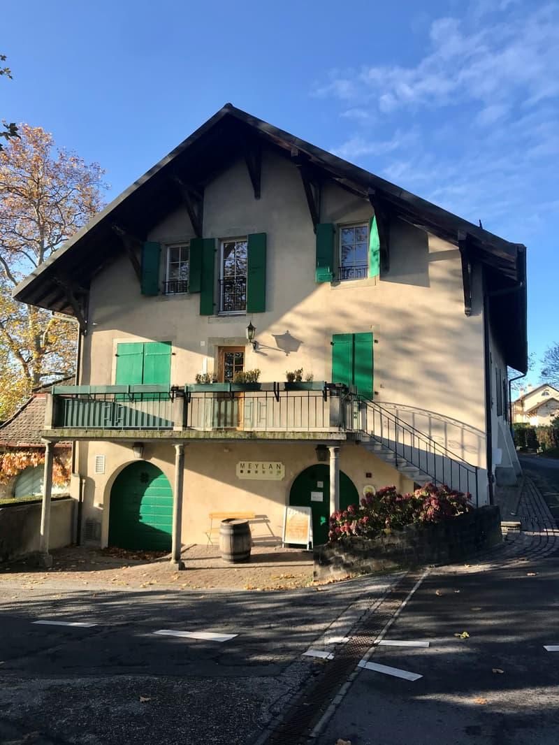 Appartement dans maison villageoise avec vue sur le lac et les Alpes