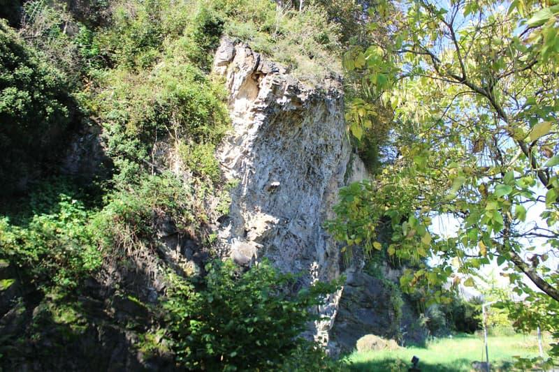Wohnen wie im Adlerhorst im sonnigen Rheintal