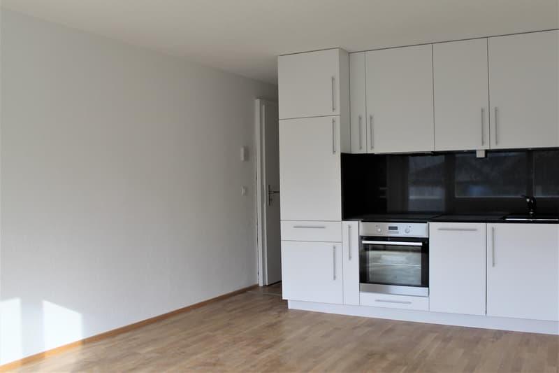2.5 Zimmer Wohnung (Erstvermietung)