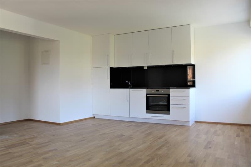 1.5 Zimmer Wohnung (Erstvermietung)