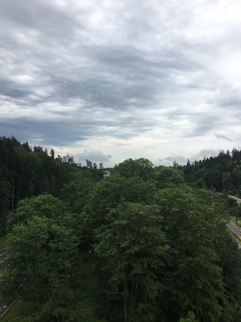 Aussicht ins Naturschutzgebiet mit Weiher