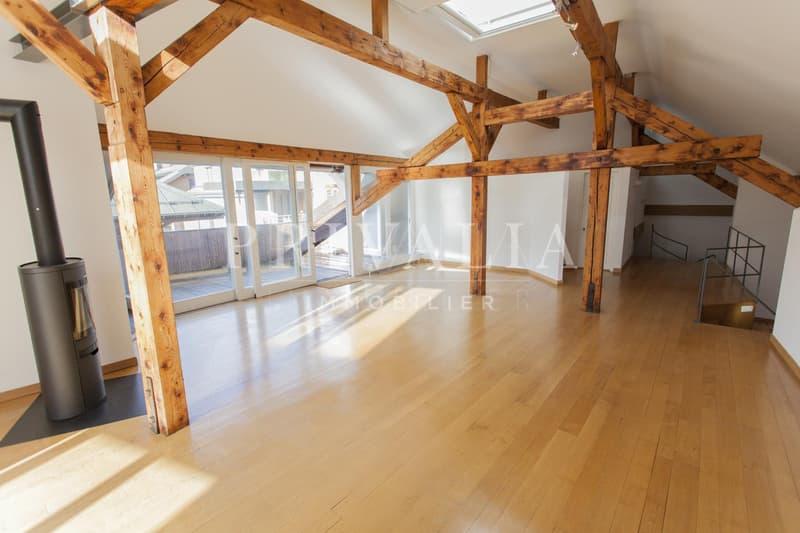 Beau duplex de 240 m2 avec terrasses aux Eaux-Vives