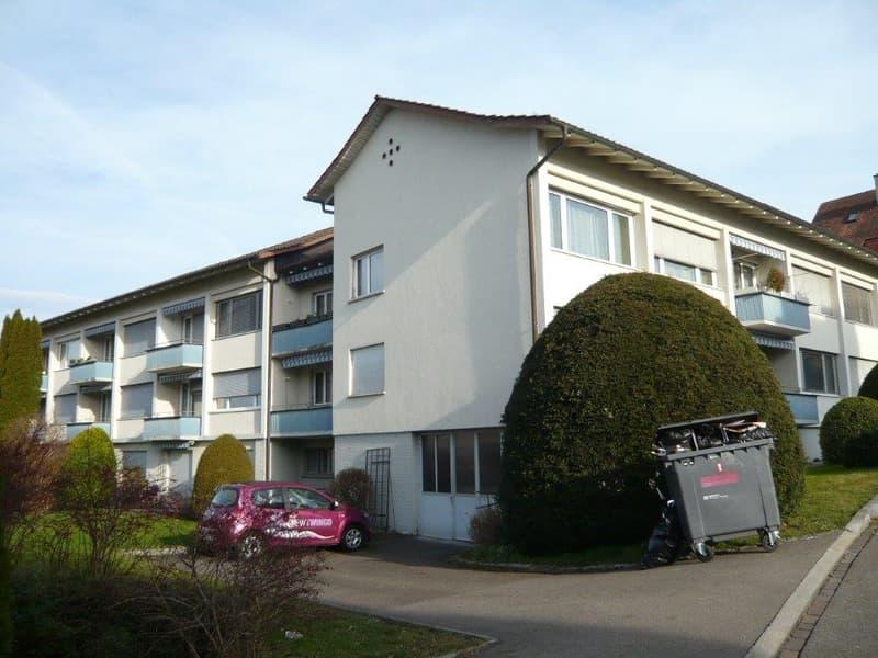 4-Zimmerwohnung in Seebach