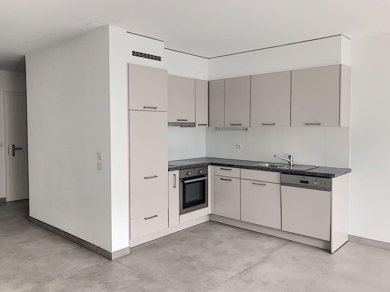 Appartement 4,5 pièces entièrement rénové, profitez d'un loyer offert (2)