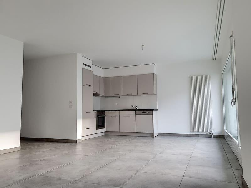 Appartement 4,5 pièces entièrement rénové, profitez d'un loyer offert (3)