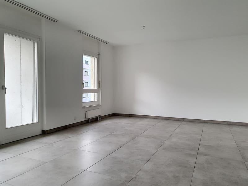 Appartement 4,5 pièces entièrement rénové, profitez d'un loyer offert (4)