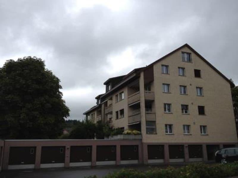 3.5 Zimmer Dachwohnung mit Aussicht in Wohnquartier