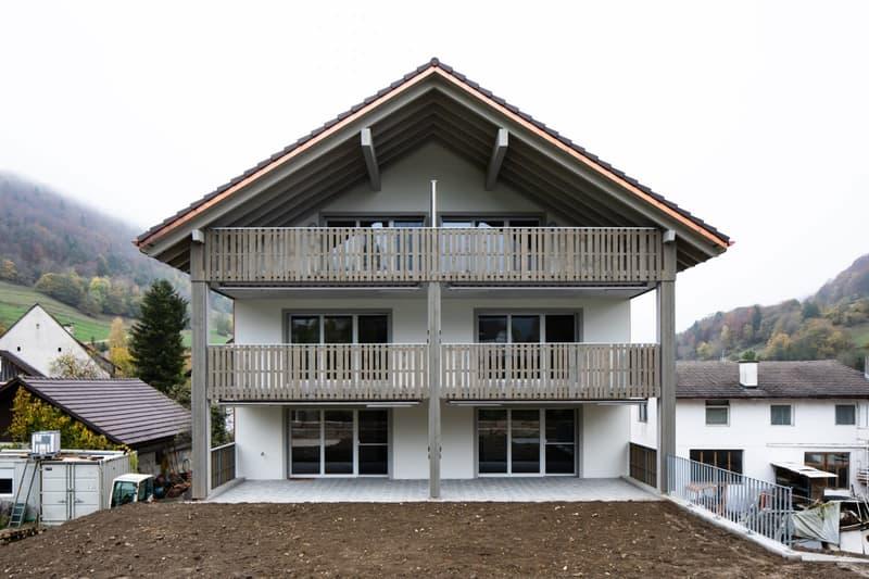 Erstvermietung aussergewöhnliche 3 1/2-Zimmer-Dachwohnung