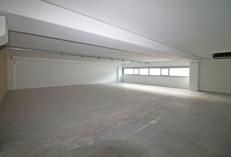 Bedano-ampi e moderni spazi industriali Centro Bedart (2)
